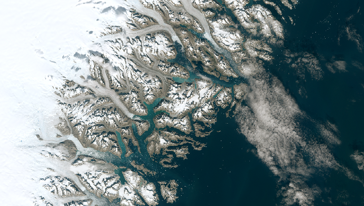 Beautiful maps. Snows and Glaciers: Greenland.